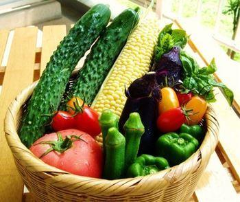 野菜_R.jpg